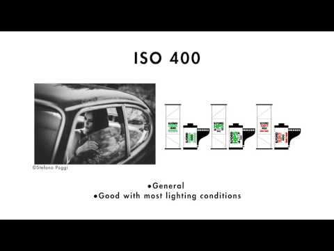 Film ISO - A beginners guide by ILFORD Photo