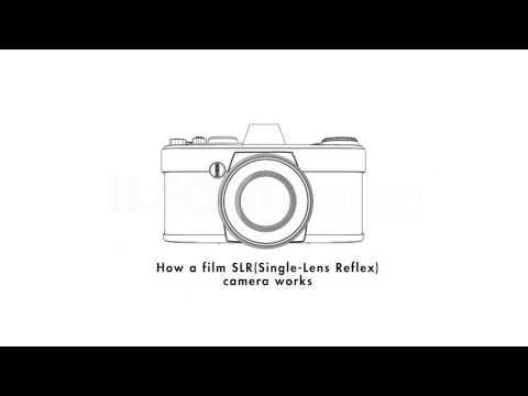 How a Film SLR Camera Works