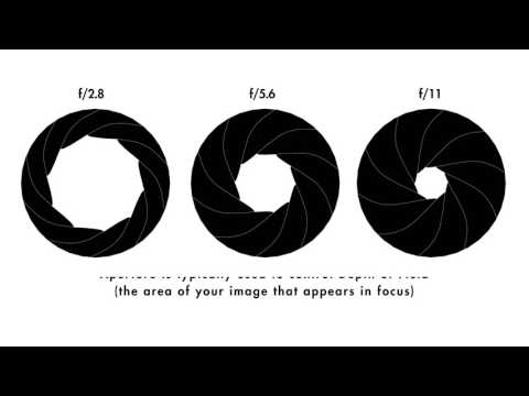 Aperture - A beginners guide by ILFORD Photo