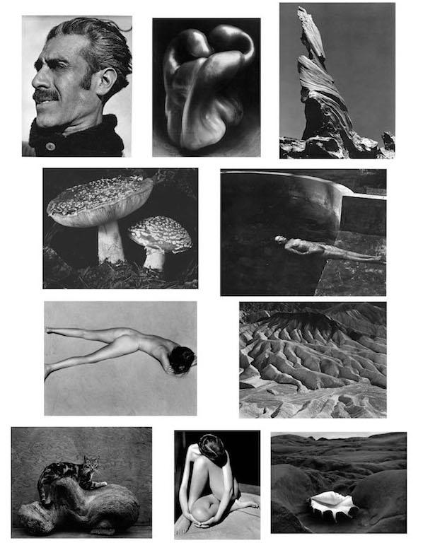 画像に alt 属性が指定されていません。ファイル名: Edward-Weston-1.jpg